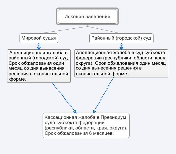 апелляционная жалоба на заочное решение районного суда образец - фото 2