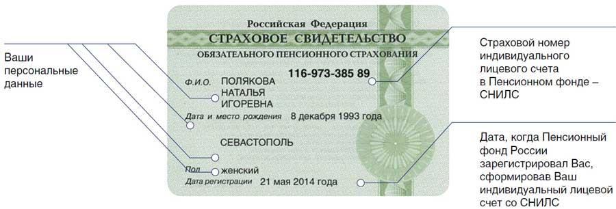 СНИЛС - страховой номер индивидуального лицевого счета